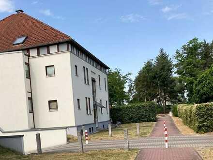 Kapitalanlage: 3 Zimmer Wohnung mit großer Terrasse