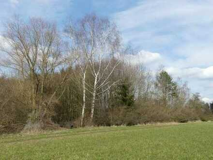Lkr. Günzburg - Grundstück/Betriebsfläche mit Baumbewuchs