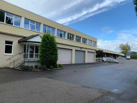 TRIWO Gewerbepark Edenkoben: Bürofläche ab ca. 200 m² ab 6,90 €/m²