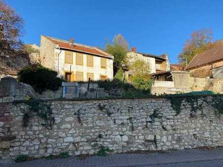 Abbruchreifes Familienhaus mit Gartengrundstück