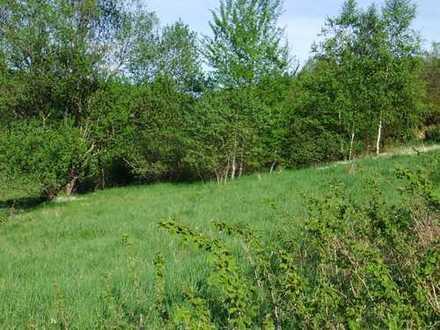 Größeres Grundstück in Nähe vom Wald mit toller Aussicht und am Ortsrand von RUDERSDORF !!