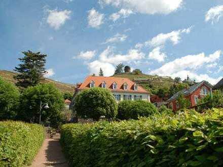 * Bestlage Radebeul * 3-Zimmer mit 2 Balkonen inmitten der Weinberge *