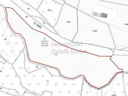 Exklusive Wald- und Grünflächen bei Abtsgmünd-Laubach