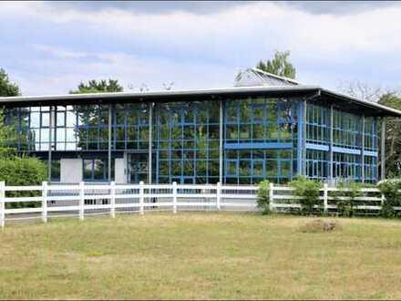 ++ Bahlingen am Kaiserstuhl: großzügige Büro-/ Produktions-/ und Lagerfläche mit ca. 1.900 m² ++