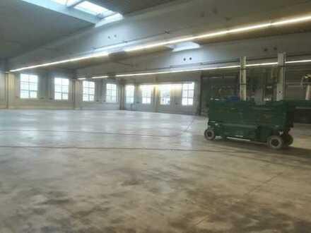 Gut isolierte, taghelle Halle, massiv gebaut!