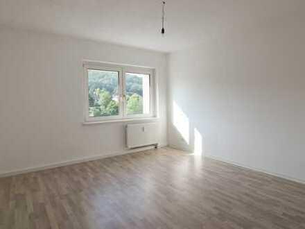 frisch renovierte 2-Zimmer-Wohnung, ab sofort bezugsfrei