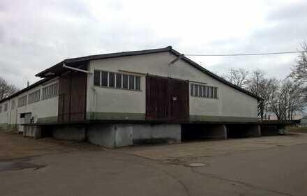 Landwirtschaftliche Halle zu vermieten (auch Teilflächen möglich)