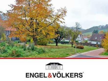 Baugrundstück in Winzenburg