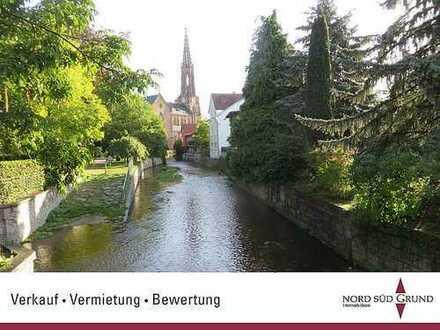 Bühl-Kernstadt: Nettes Fachwerk-Haus am Stadtgarten. 3-ZKB, ca. 100 m² Wohnfläche, Terrasse