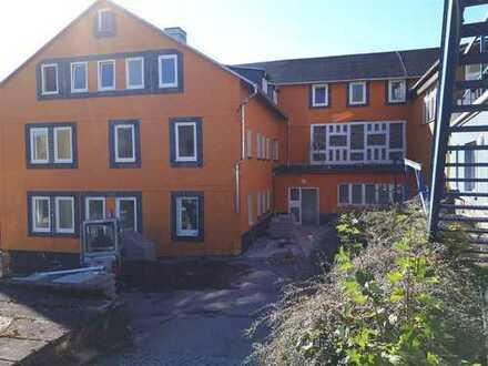 Tolle, neu renovierte 3-Raum-Wohnung mit herrlichem Ausblick!