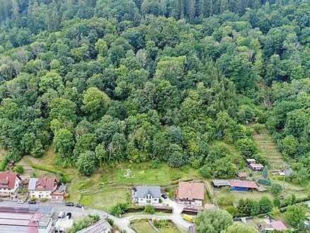 Online-Auktion: 2 Waldgrundstücke nahe Wohnbebauung in Bayern (O-427)
