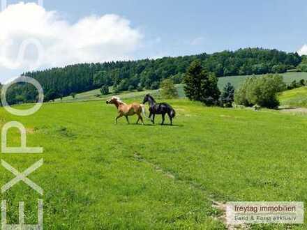 Grünes Refugium für Mensch und Pferd: Exklusiver Landsitz