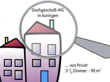 Schöne dreieinhalb Zimmer Wohnung in Wiesbaden, Auringen