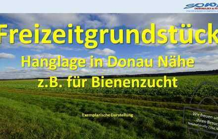Freizeitgrundstück mit in Hanglage in Donau nähe - Keine Bebauung möglich - Eine Objekt von SOWA ...