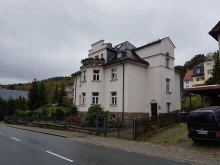 Individuelle 4 + 2 x 1/2 Zimmer-Wohnung mit Balkon und Garten in Aue