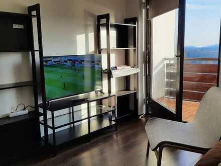 Stilvolle, vollständig renovierte 1-Zimmer-Wohnung mit Balkon und Einbauküche in Böbrach