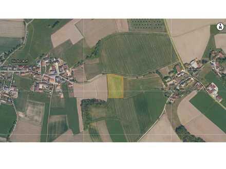Ackerfläche bei Aresing zwischen Niederdorf und Diepoltshofen zu verkaufen!