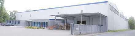 Neukirch Immobilien: 4.920,00 m² ebenerdige Lagerhalle, 317,00 m² Büro und 4 Hallenzufahrten!