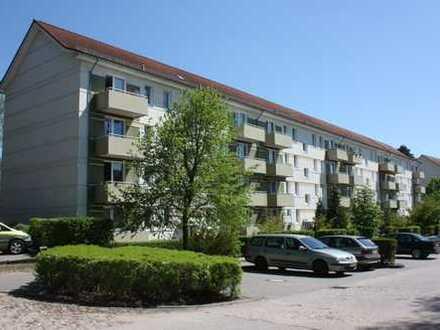 Schöne 2-Raum-Wohnung im Grünen