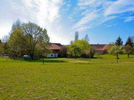 Liebevoll sanierter Bauernhof mit Nebengebäude und Pferdestall!