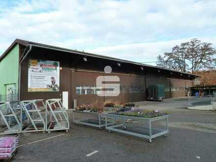 Lagerhalle mit Freiflächen und zwei vermietete Mehrfam.-Häuser in zentraler Lage von 97461 Hofheim!