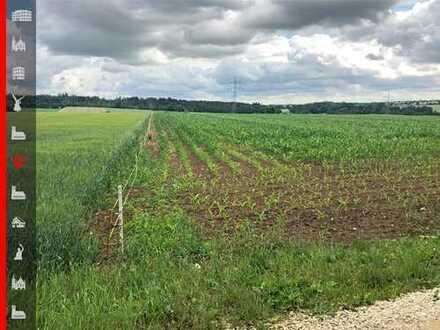 Landwirtschaftliches Objekt in Schernfeld