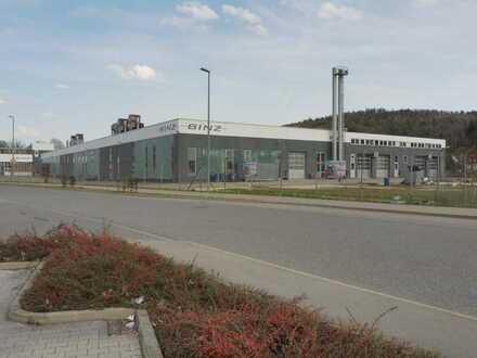 Gewerbeareal mit 28.500 m² Grundstück, Hallen für Produktion und Lager