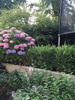 Hier möchten Sie wohnen! Niederkassel! Maisonette-Wohnung mit Garten!