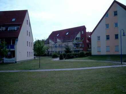 2 Raum Wohnung mit Terrasse in Müncheberg