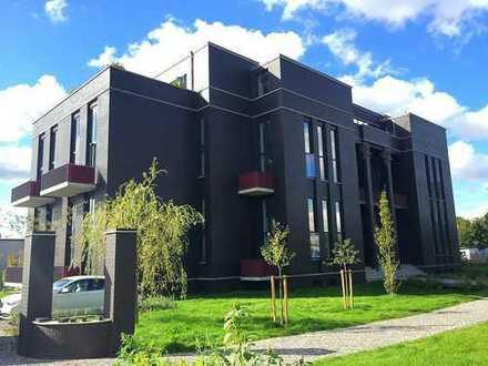 Büro, Studio, Praxis, Coworking & Event Location – Dachgeschoss mit 4 Terrassen und Swimmingpool