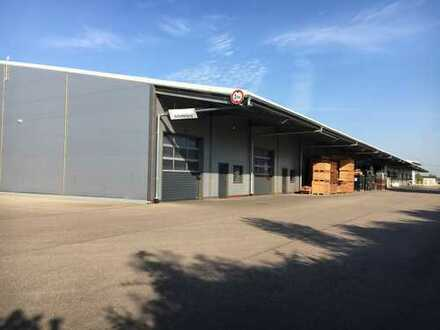 Lager-/Produktionsflächen im Gewerbepark Breisgau