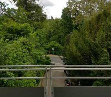 Top-Parkblick + sonnig: 4 ZKB WI-Sonnenberg ; 50 Meter in den Kurpark