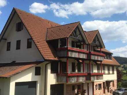 Attraktive, sonnige 2 Zimmerwohnung in Tonbach