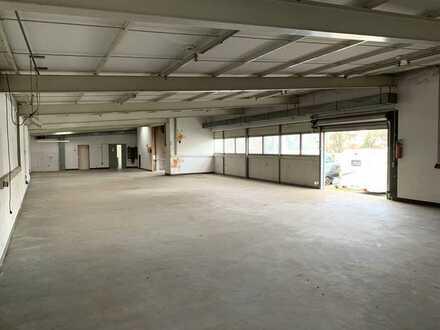 Flexibel nutzbare Lager oder Produktionshalle im Herzen von Speyer