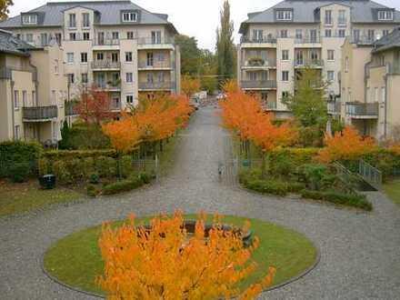 Helles Apartment in zentraler Lage am Anfang des Loschwitzer Ebhang