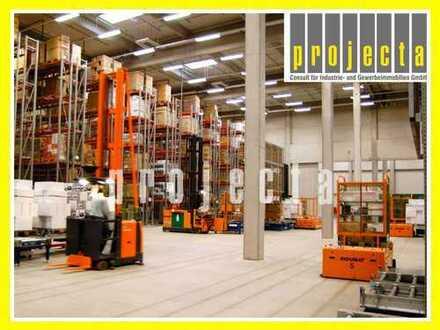 PROJECTA: 3.350 m² Logistikanlage, 10x Rampen, 9m UKB, 24/7 Nutzung gewährleistet, Sprinkleranlage