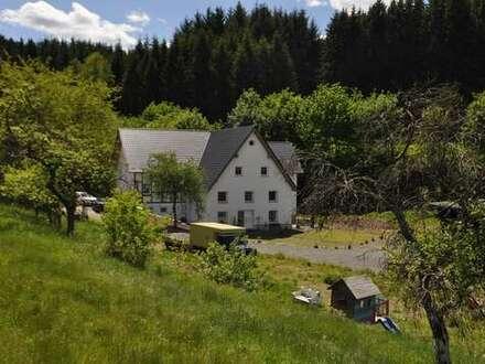 Mehrgenerationen- Haus mit 3 abgeschlossenen Wohnungen auf 12 ha in Alleinlage im Sauerland