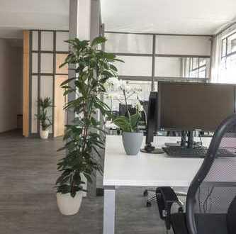 Direkte Citylage++Ihre neue Büro/Praxisfläche++großzügig u.hell, Parkett u. Industrie-Look!
