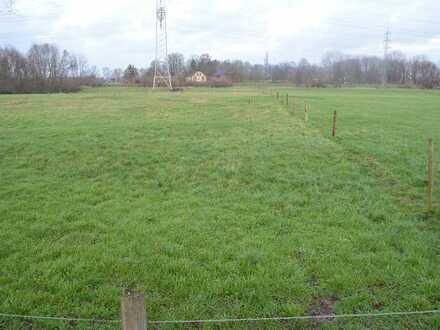IMMOKONZEPT-NIEDERRHEIN: Gelegenheit ! Im Naturschutzgebiet eine Grünfläche nutzen.....