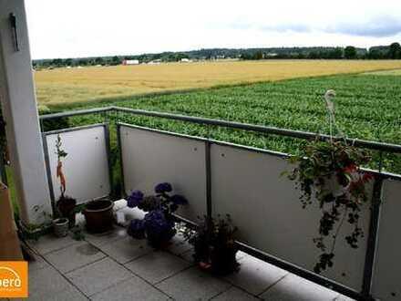 albero:) Silzenfeld: den Raps direkt vorm Balkon