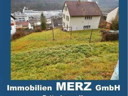 ~~Bauträgerobjekt in Horb am Neckar~~