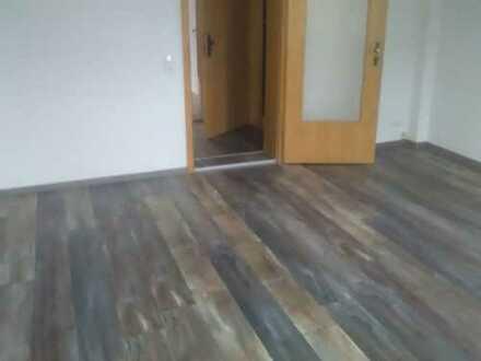 Geräumige, günstige und vollständig renovierte 1-Zimmer-Hochparterre-Wohnung in Weseram