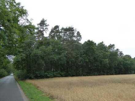 Waldflächen in 15848 Rietz Neuendorf OT Drahendorf und OT Neubrück