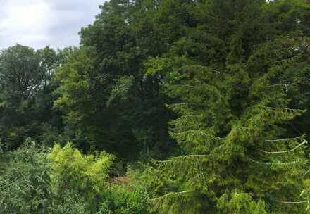 Naturidylle mitten in München - Reihenhaus mit sensationellem, unverbaubarem Blick in die Isarauen