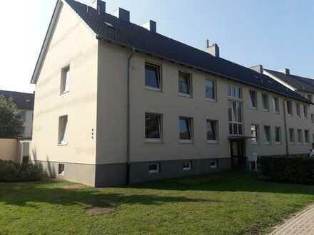 Helle und frisch sanierte 4,5-Zimmerwohnung in Ohmstede