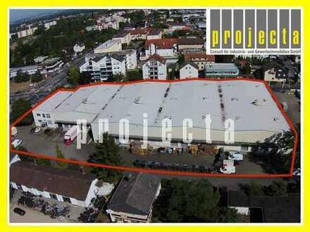 PROJECTA: 4.470m² Hallenfläche (teilbar ab 1.500 m²) | 16 Tore | Sprinkleranlage | BMA | in MÜHLHEIM