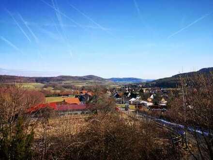 Erstbezug nach Sanierung mit Balkon: schöne 4-Zimmer-Wohnung in Neunkirchen am Brand