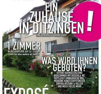 1 Zimmer Wohnung in Ditzingen