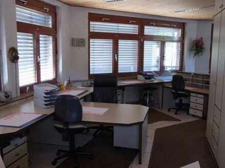 Funktionale Büro/Lager/Serviceflächen in Klingenberg am Main