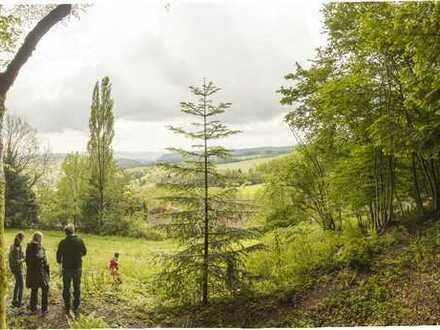 Baugrundstück für naturliebhaber, mit Alpensicht